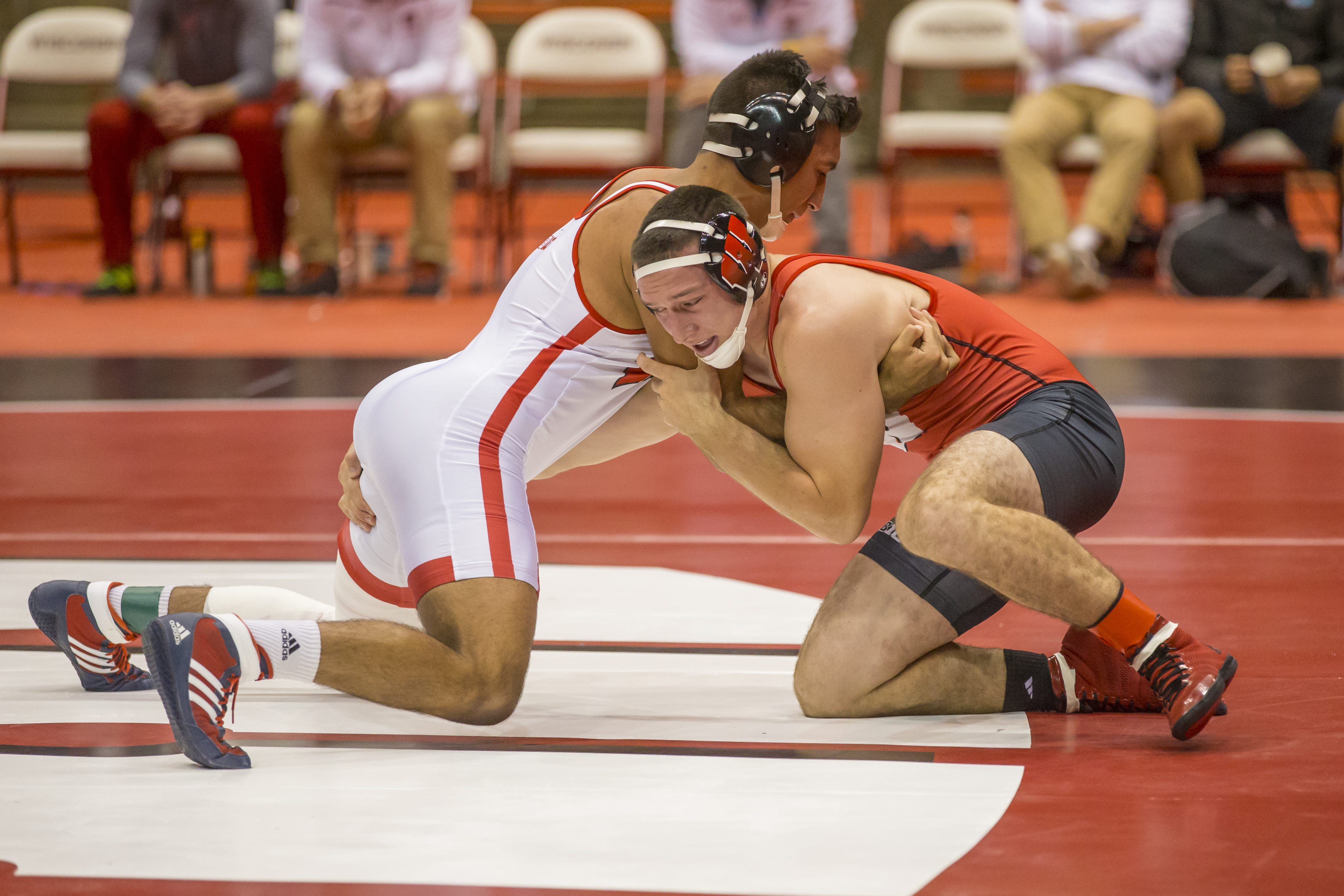 wrestling wisconsin athletics ricky robertson 2015 16 ricky robertson photos